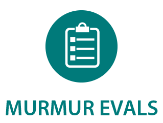 Murmur Evaluation